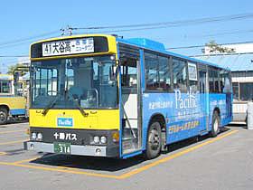 색상 버스
