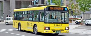 노선 버스