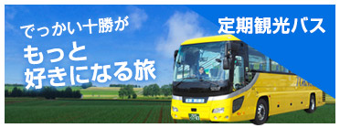 Regular Tourist Buses