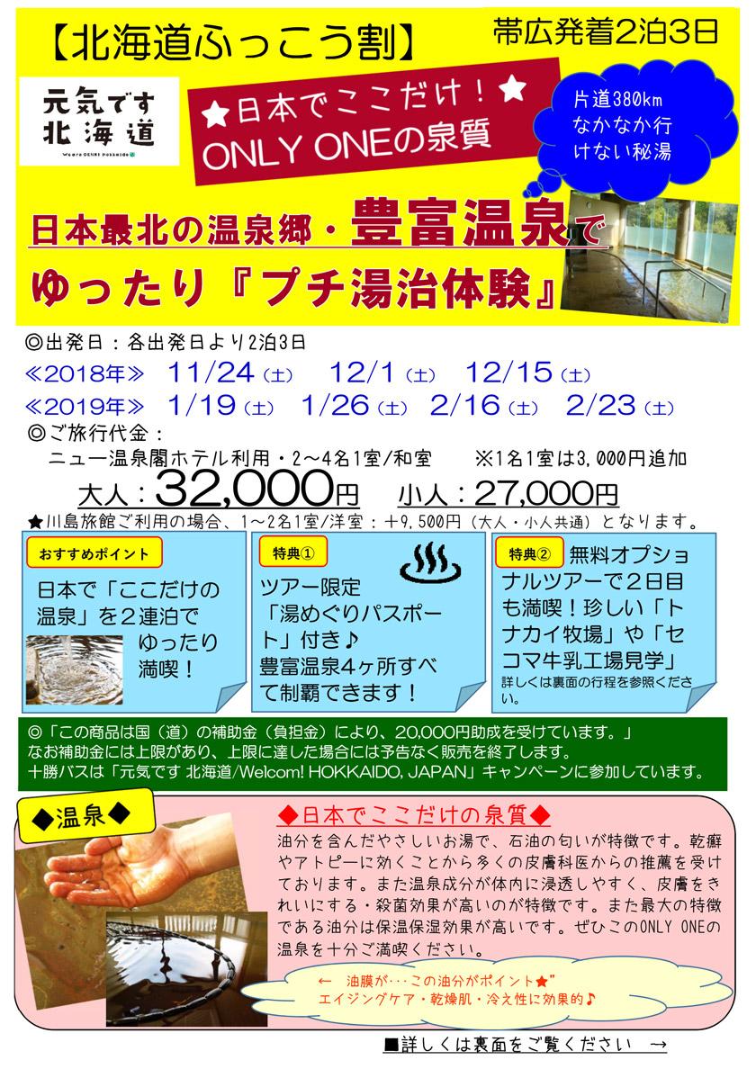 【北海道ふっこう割】日本最北の温泉郷・豊富温泉でゆったり『プチ湯治体験』【帯広発着2泊3日】
